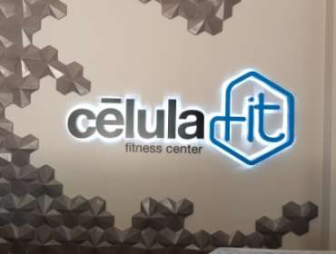 Letras internas celula fit